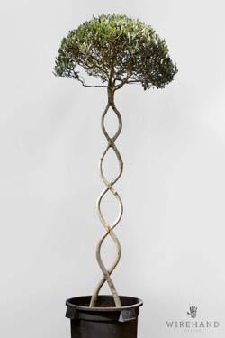 Wirehand_TreeShoot_13_thumb
