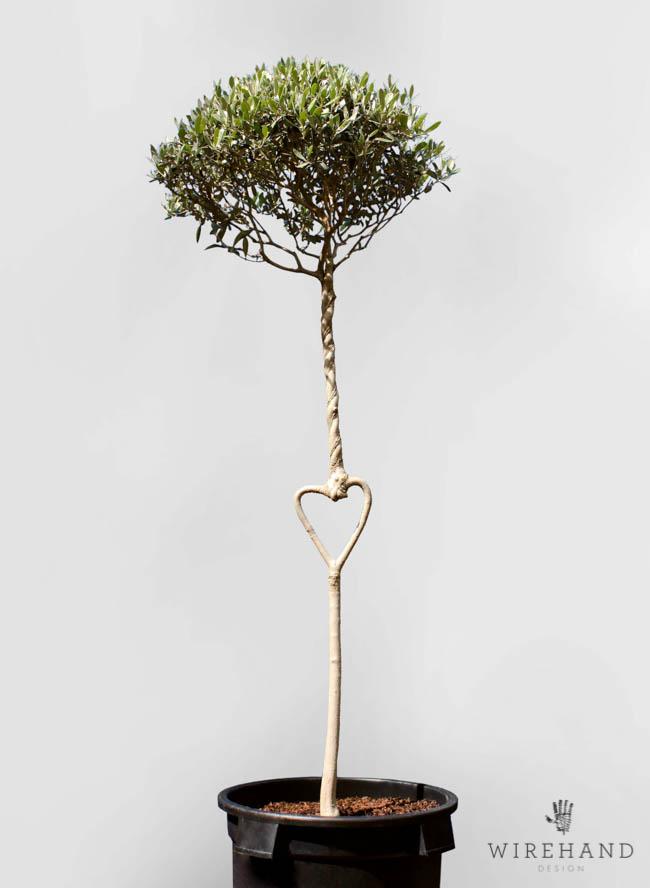 Wirehand_TreeShoot_16