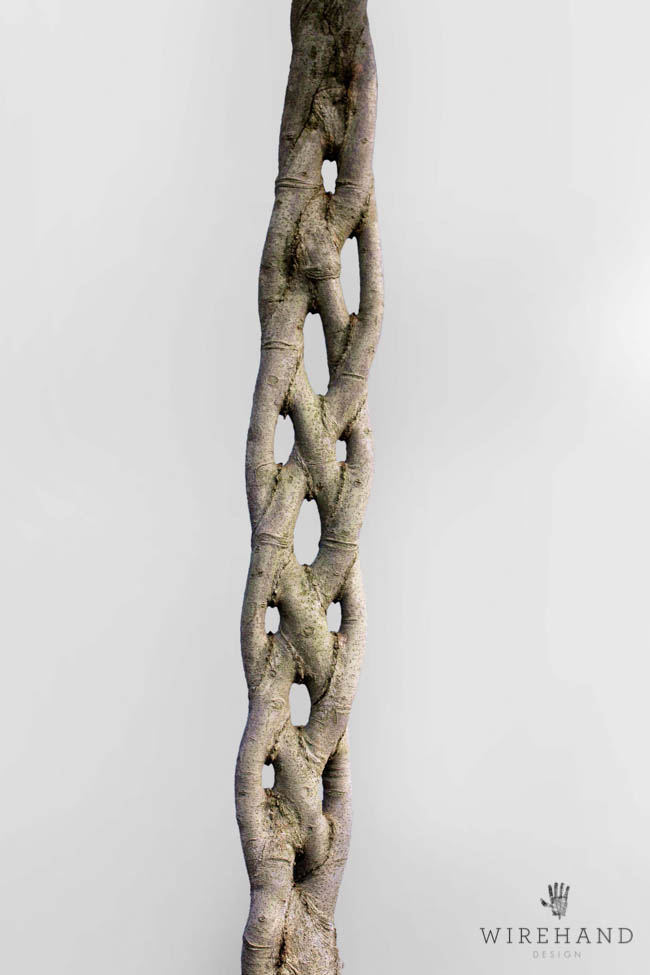 Wirehand_TreeShoot_1_close